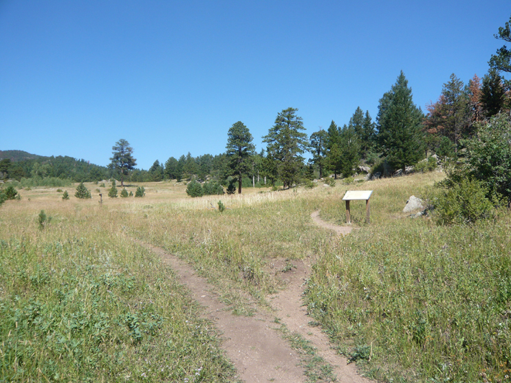 The beginning trail at Homestead Meadows with an open field. An interpretive sign on the right.