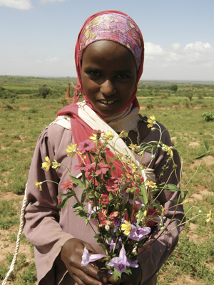 A girl from Kare Gutu helped in collecting plants in the kallo.
