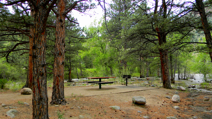One of the picnic sites at Stevens Gulch Picnic Site. The Cache La Poudre River in the background.