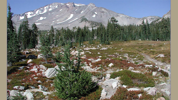 Upper Panther Meadows with Mt. Shasta in the background