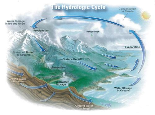 graphic of the water cycle