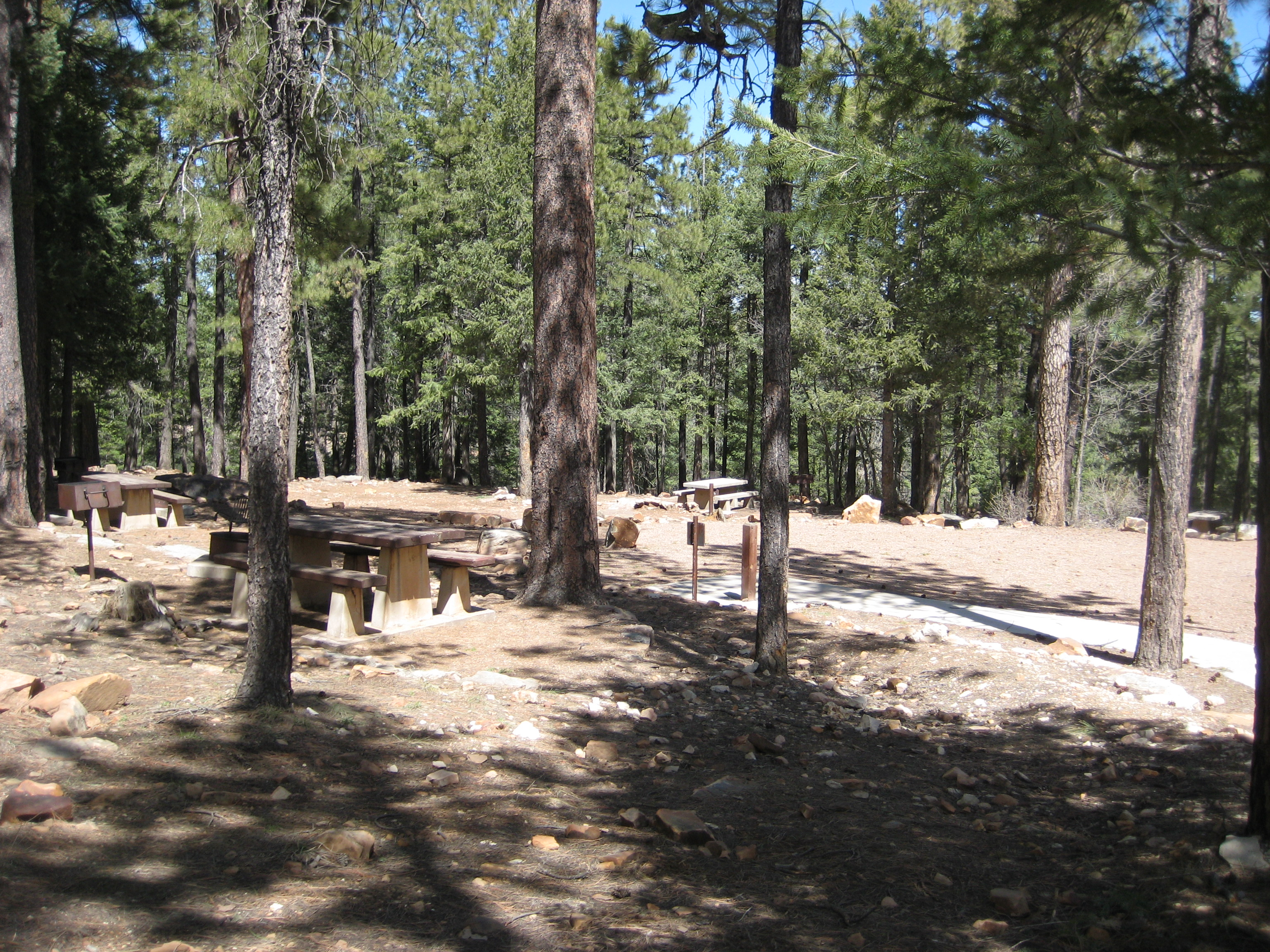 friendly az cabins rent cheap pinetop cottage flagstaff family pet cabin prescott rentals in payson