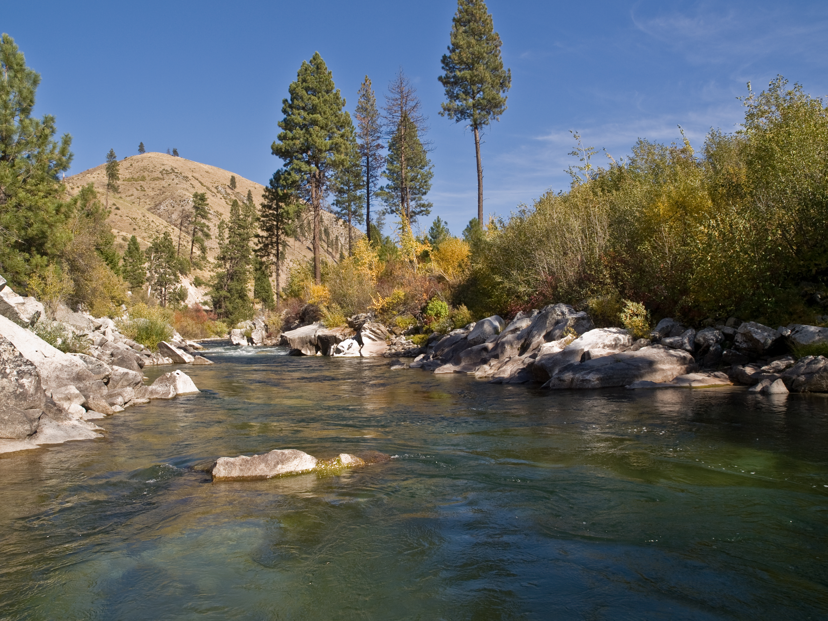boise national forest employment idaho city mores creek by kari greer