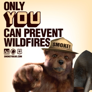 Smokey Bear says Only You Can Prevent Forest Fires
