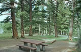 Photo of a campground on the Helena National Forest.