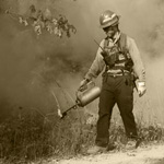 Firefighter with drip torch.