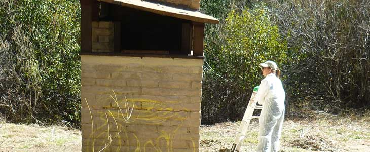 Middle Lion Campground toilet with grafitti