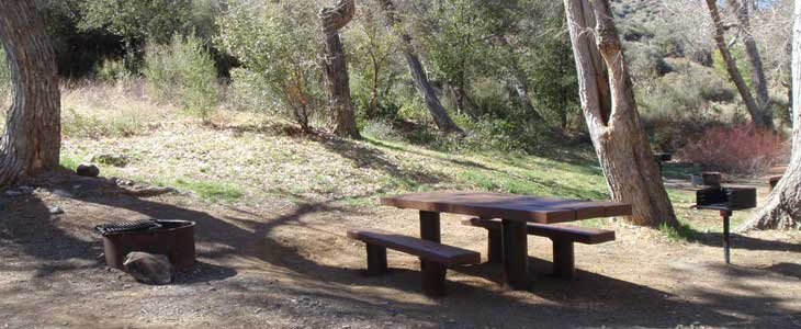 Middle Lion Campground picnic table with new planks and new BBQ. Overhang on table allows for wheelchair access