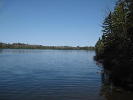 View of BWCAW in the spring