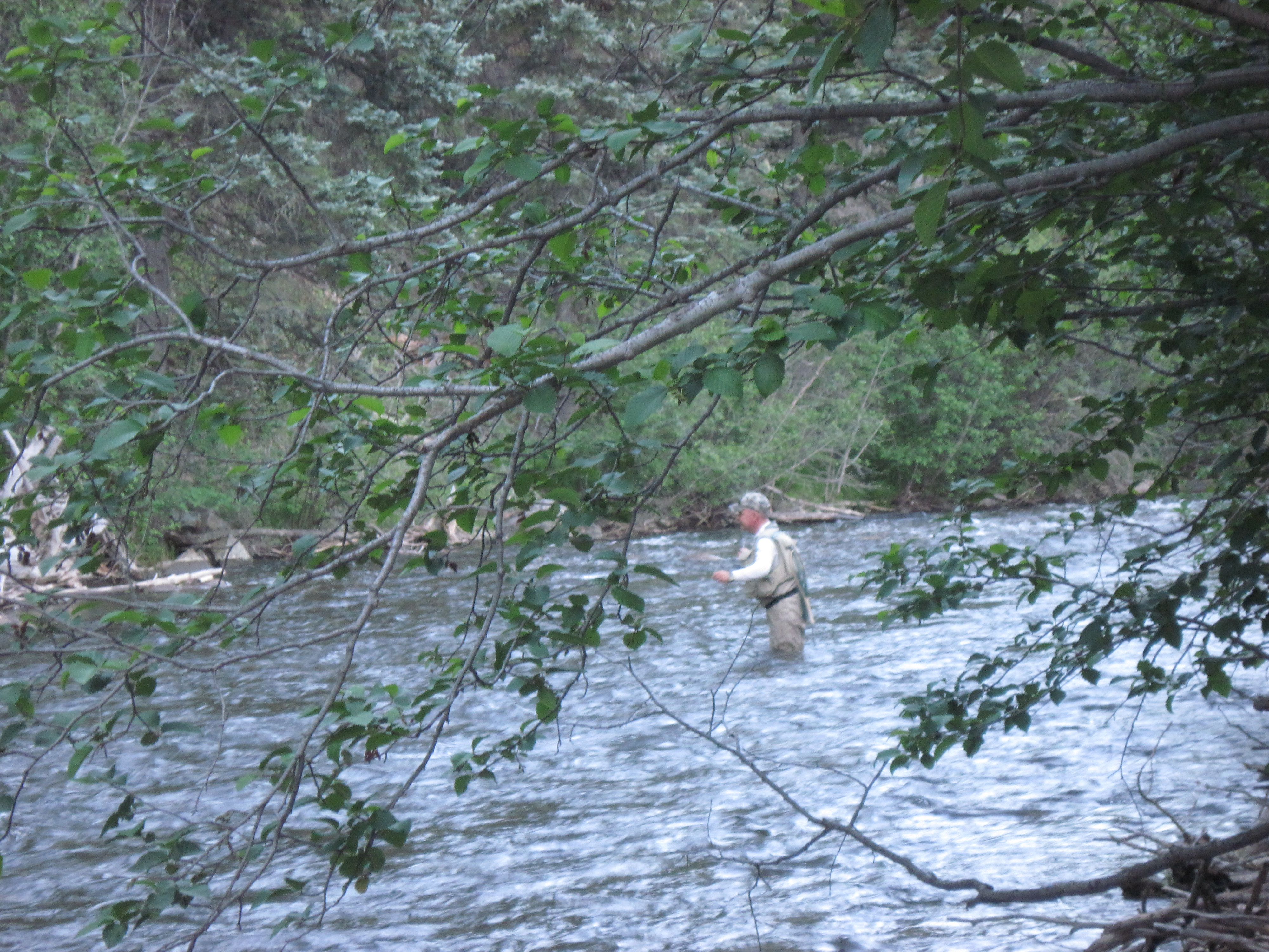 Man fishing on the Pecos River