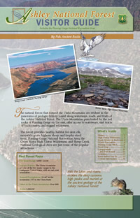 Image of the cover page for the Ashley National Forest Visitor Guide.