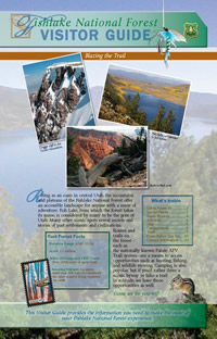 Image of the cover page for the Fishlake National Forest Visitor Guide.