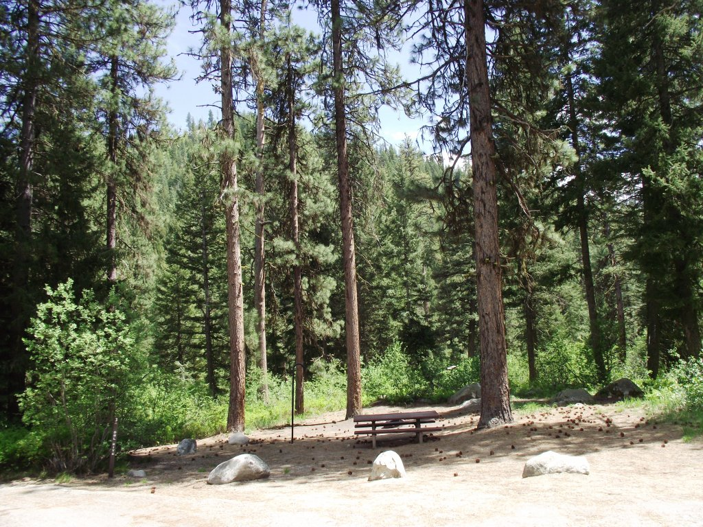 IC - Bad Bear Campground