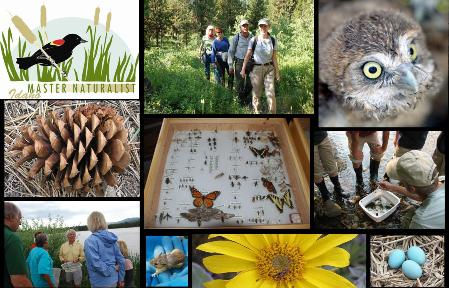 Master Naturalists of Idaho