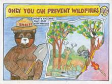 Image: A poster drawing featuring Smokey Bear- Only you can prevent forest fires