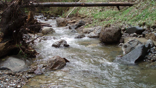 Stream channel in tributary 0183A after culvert removal, Calawah Watershed.