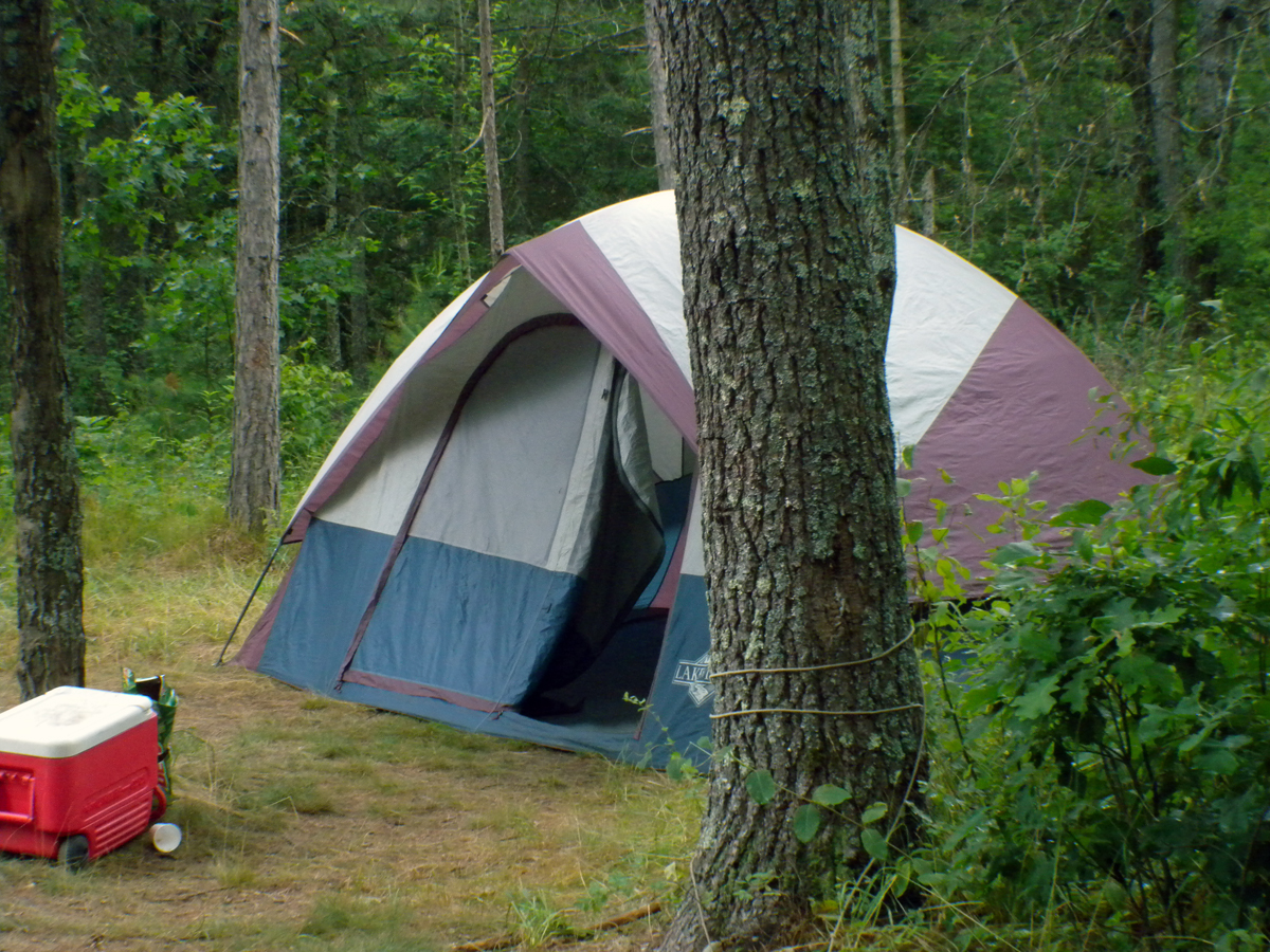 Au Sable Loop Campground - tent camping