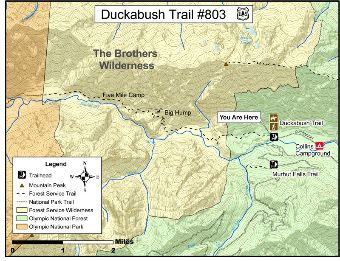 Duckabush Trail #803 Map.