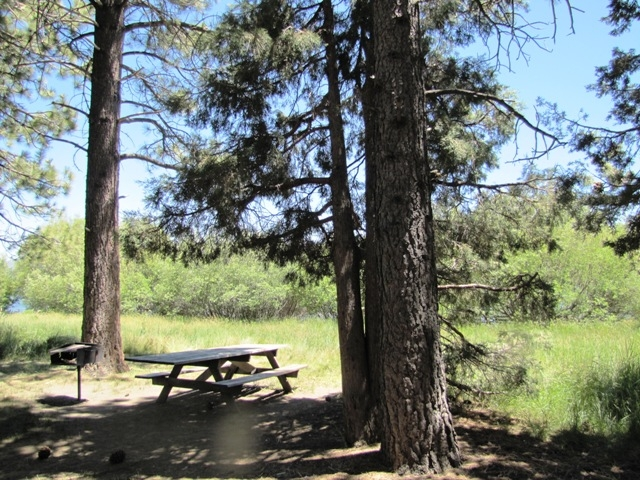 This popular picnic area is on the north shore of Big Bear Lake.