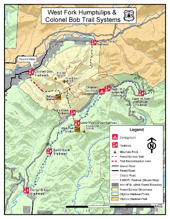Westfork Humptulips Trail System & Colonel Bob Wilderness Map.