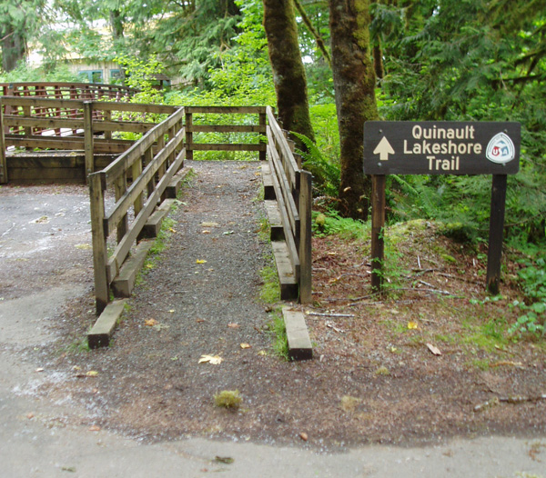 Trail from Falls Creek to Lakeshore Trail, Quinault Lodge, walk in sites.