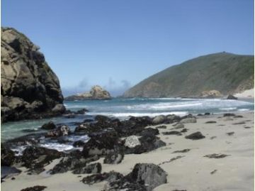 [image[ Pfeiffer Beach - Big Sur