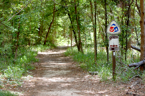 Lone Star Hiking Trail on the Sam Houston National Forest