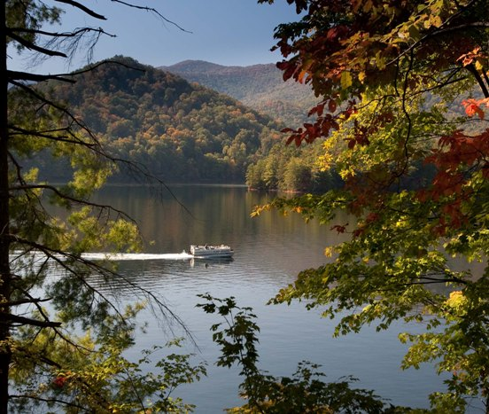Fall in Cheoah Point, Nantahala Ranger District