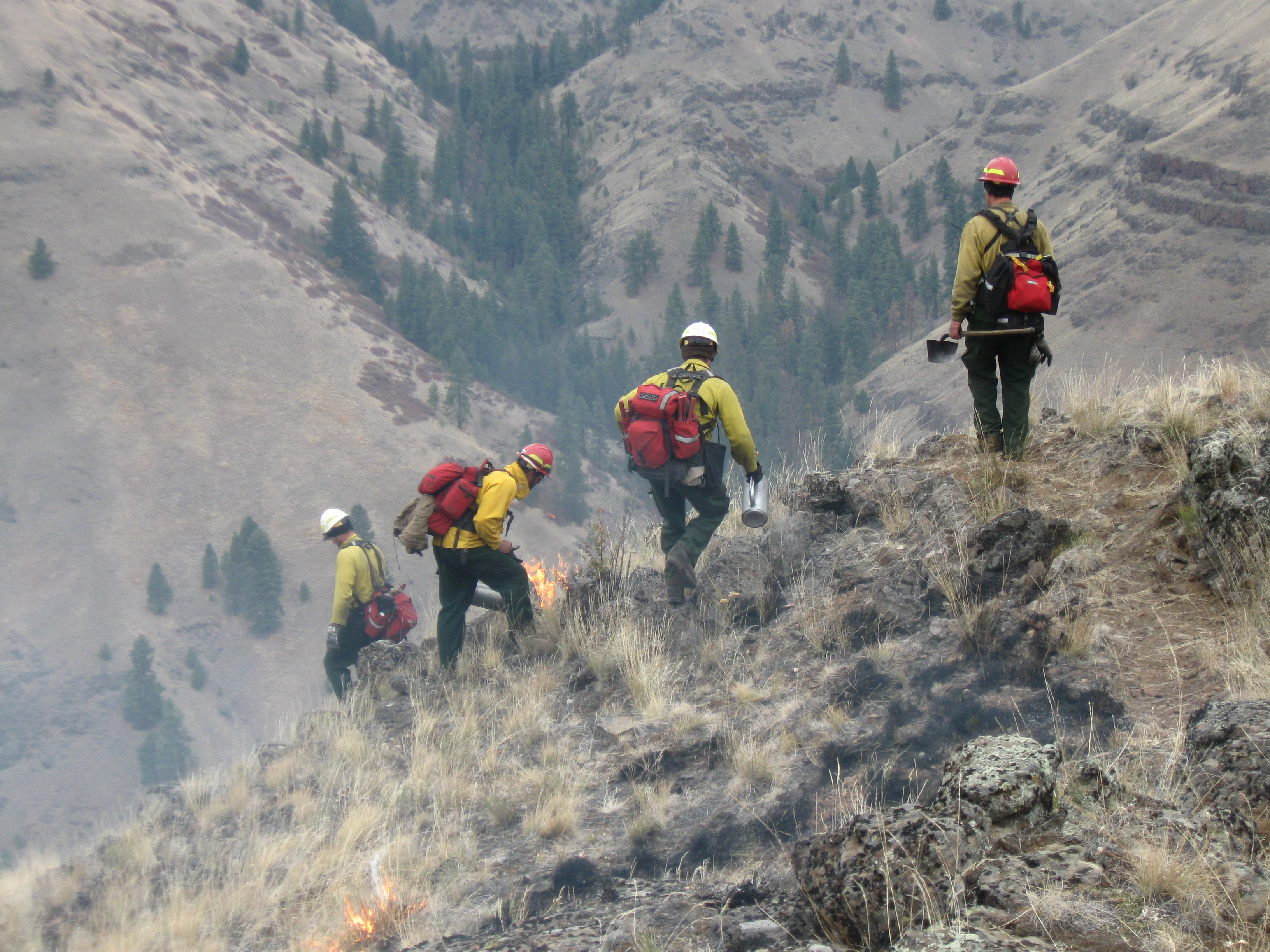 Firefighters monitor a prescribed burn.