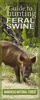 Guide to hunting feral swine - Bankhead National Forest