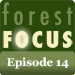 Forest Focus Episode 14.