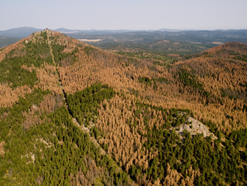 Custer Peak Aerial Photo