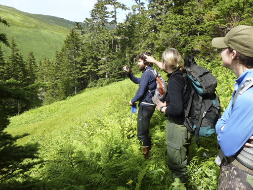 Employees walk up through the Endicott Wilderness.