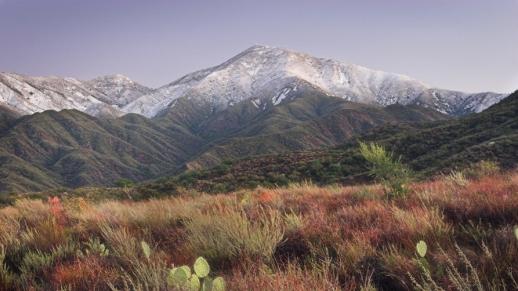 Trabuco Winter Landscape