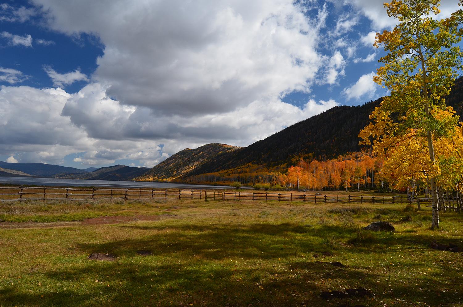 Image with a lake in the middle and aspen in fall colors on the right