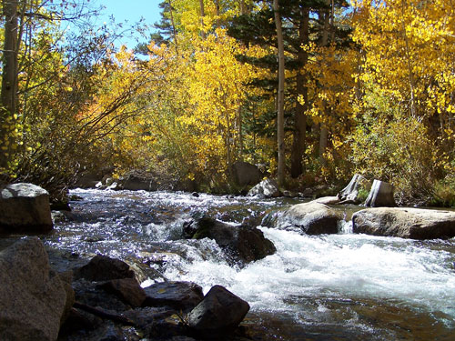 Bishop Creek Fall 2012