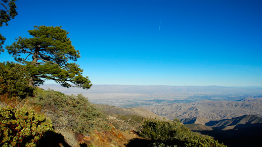View of the Coachella Valley from the PCT in the San Jacinto Wilderness.