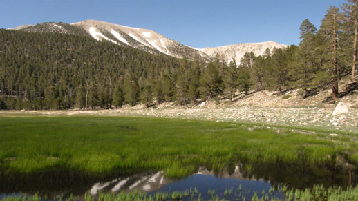 Dry Lake in the San Gorgonio Wilderness.