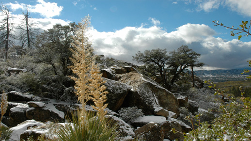 Winter over the San Jacinto mountains.