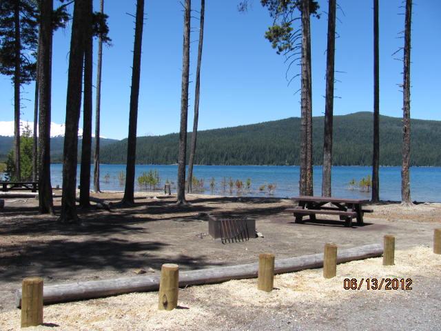 Contorta Flat Campsite