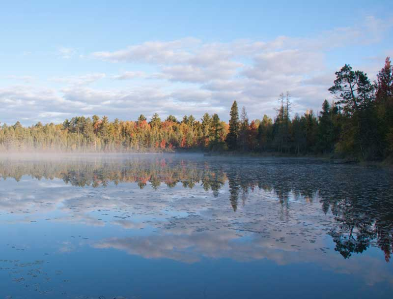 Chequamegon-Nicolet National Forest - Nature & Science