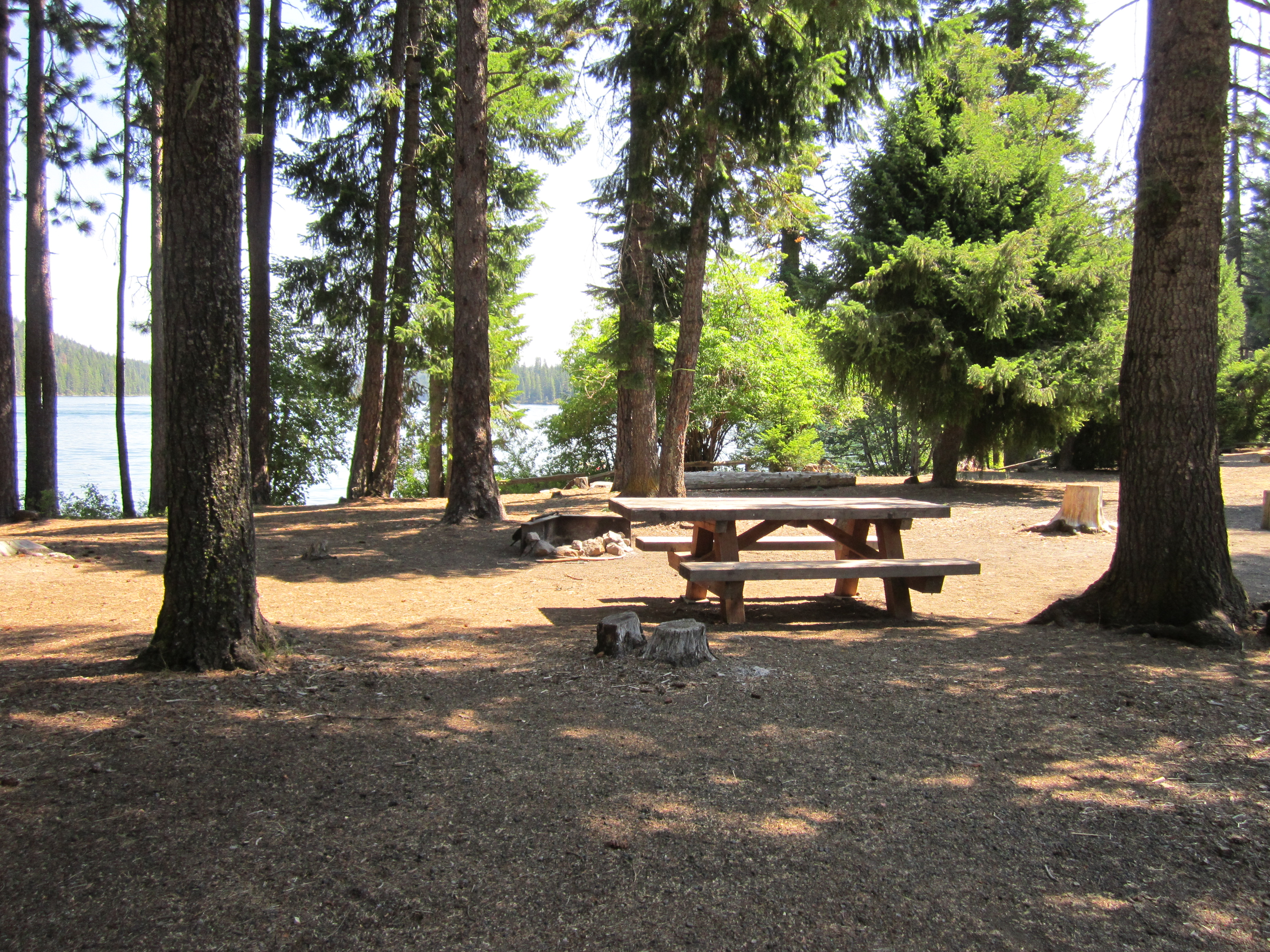 Link Creek Campsite