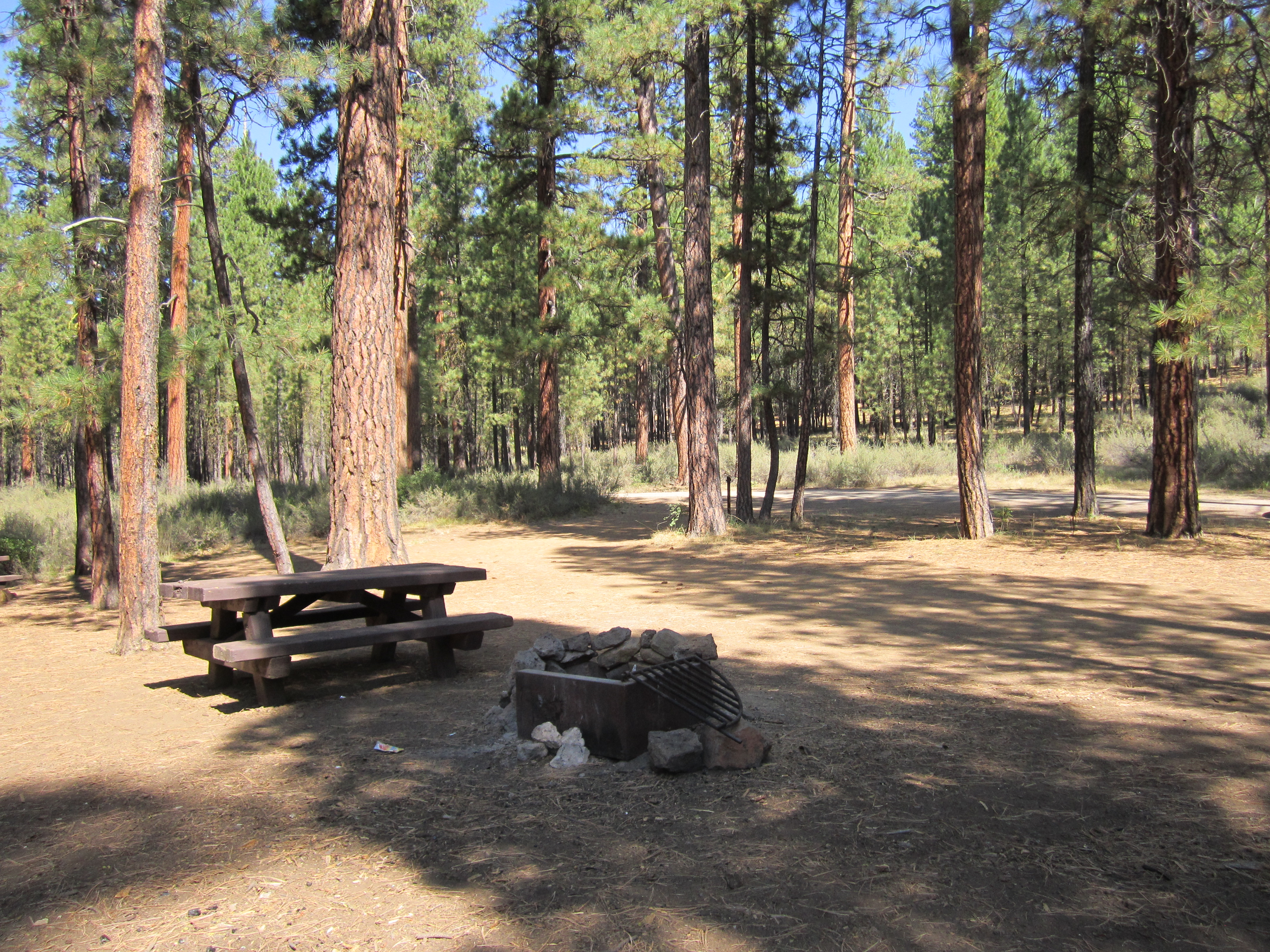 Lower Canyon Creek Campsite