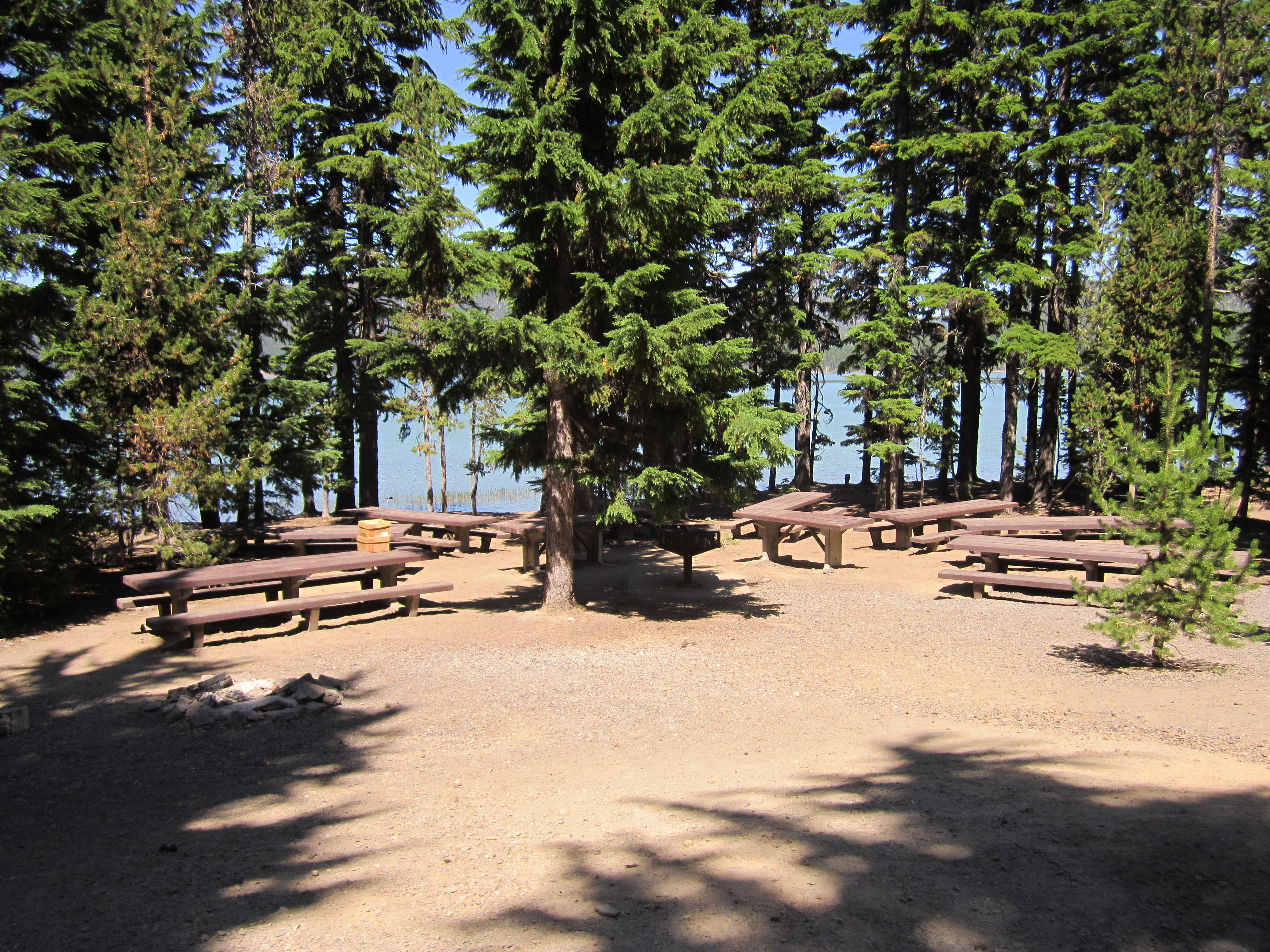 Newberry Group Campsite