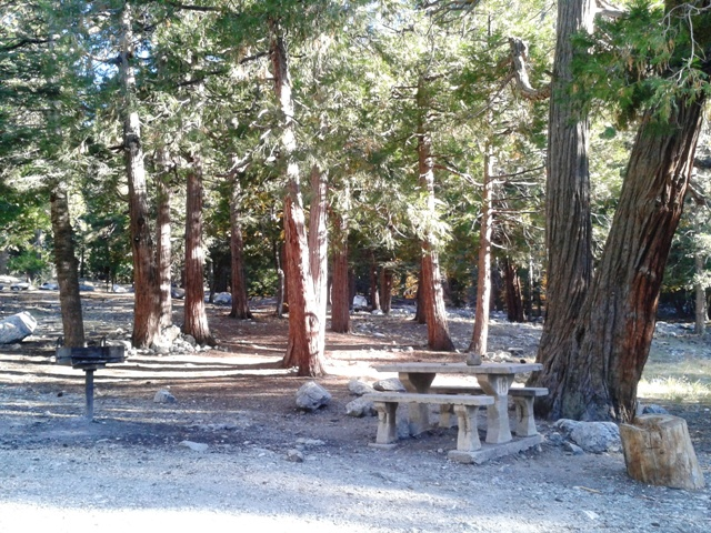 A picnic table sits underneath trees at Falls Picnic Area near Forest Falls.