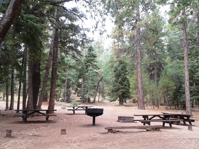 This group campground is located near the heart of Big Bear Lake.