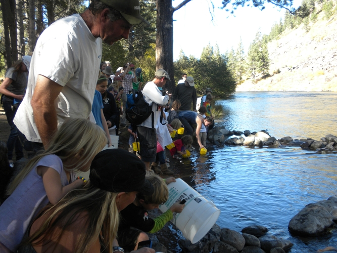 During Truckee River Day, Children Release Lahontan Cutthroad Trout into the Truckee River