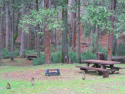 Lost Claim Campground Site