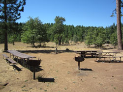 Pines Campground Group Site (250)
