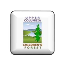 Image: Children Forest Image